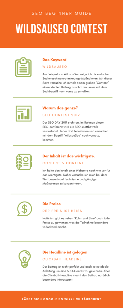 WildsauSeo Infografik